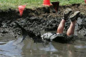 Fallen in mud